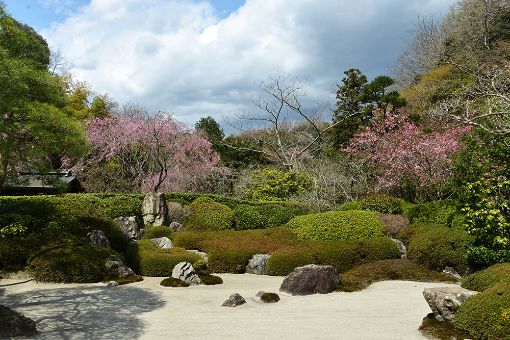 Japan 5 Apr 2014 KAMAKURA 15