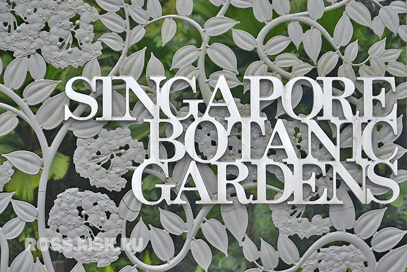 _Singapore Dec 2013_11 BOTANIC GARDENS
