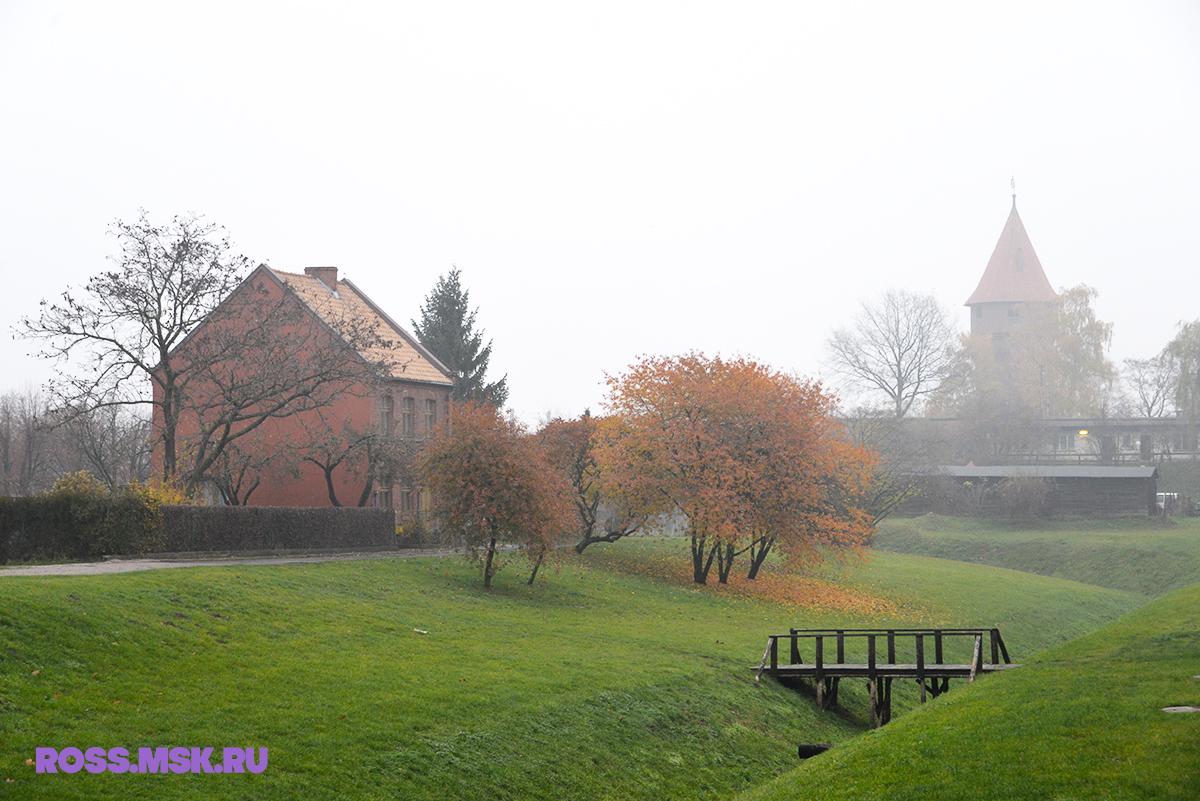 _11_2015 Malbork Poland 75