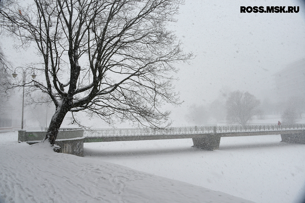 _01_2016 Schnee in Kaliningrad 11