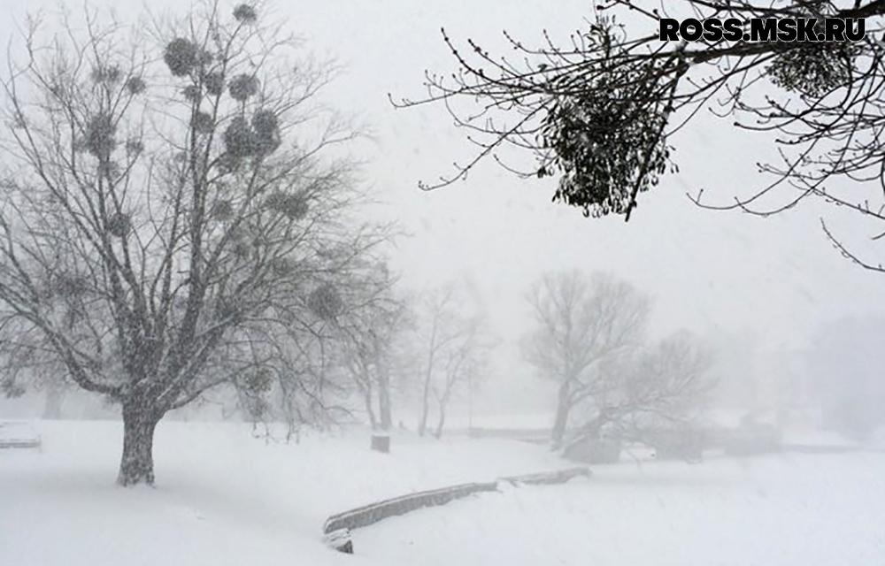 _01_2016 Schnee in Kaliningrad 21