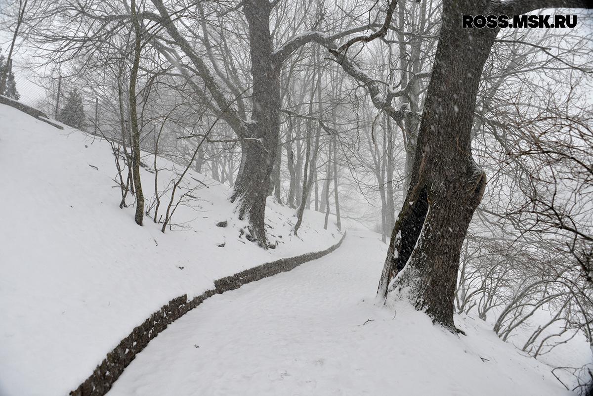 _01_2016 Schnee in Kaliningrad 5