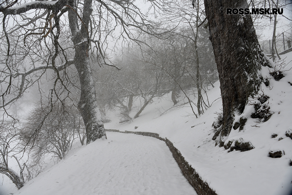 _01_2016 Schnee in Kaliningrad 6