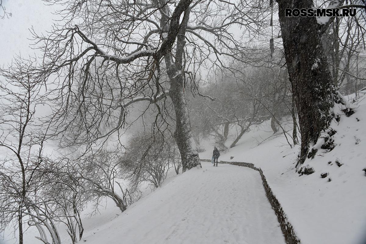 _01_2016 Schnee in Kaliningrad 8