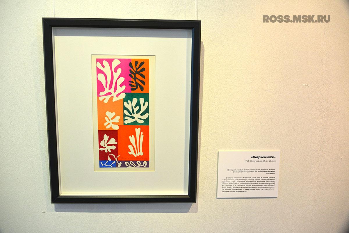 Henri Matisse – Podsnezhniki
