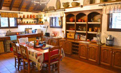 Путешествие в Испанию – Тенерифе, Канарские острова